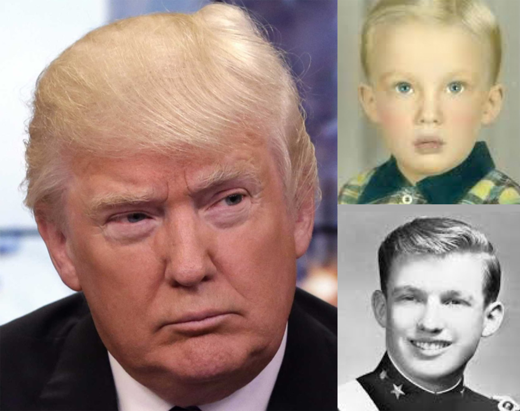 What does donald trump s morphology say by juli n gabarre